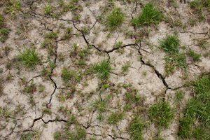התייבשות הקרקע ומאגרי המים