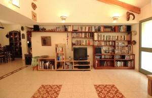 ספרייה בסלון ביתיי