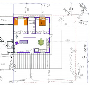 בית משפחת גולדברג, תוכנית שיפוץ